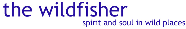 wildfisher logo new